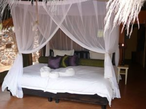 Jaci's Lodges Madikwe Game Reserve