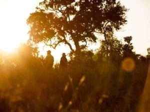 Singita Lebombo Lodge - Kruger National Park