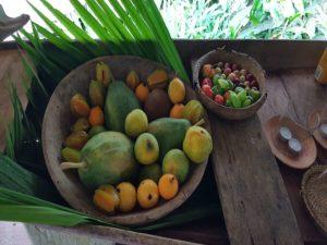 Amazonie - fruits