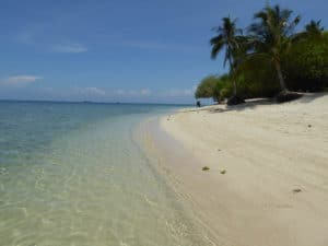 Tortule Island