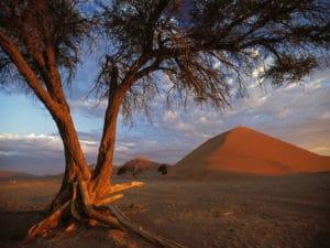 Dunes Sossusvlei