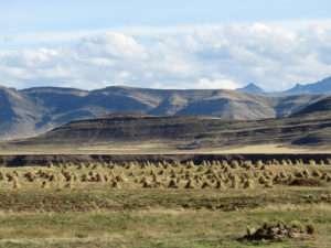 Entre Puno et Cuzco
