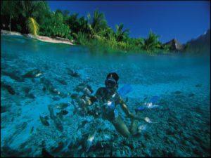 Snorkeling Bora