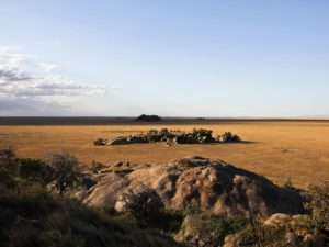 Namiri Plains