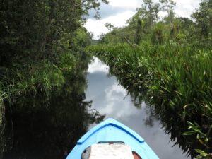 Kalimantan - croisière