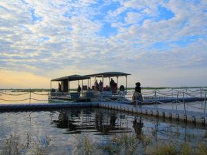 Croisière Chobe river