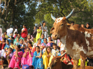 MaheswarFestival