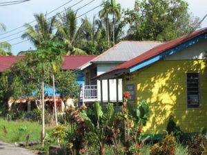 Bornéo - Long House