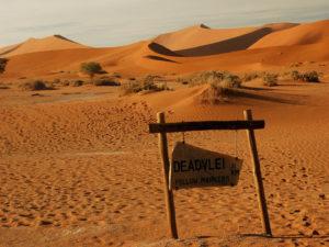 Dunes deadvlei