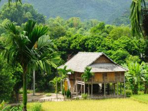Mai-Chau Village