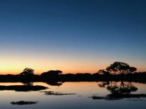 coucher soleil Hwange