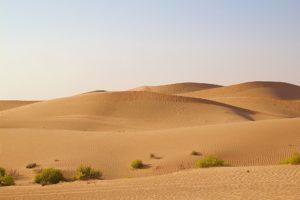 Désert Abu Dhabi